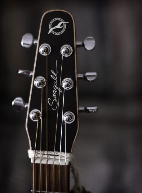 Seagull_guitar_headstock